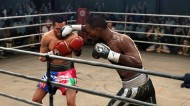 Fight Night Round 4 screenshot #201 for Xbox 360 - Click to view