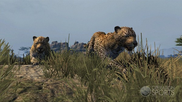 Cabela's Dangerous Hunts 2013 Screenshot #6 for Xbox 360, PS3, Wii
