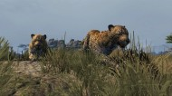 Cabela's Dangerous Hunts 2013 screenshot #6 for Xbox 360, PS3, Wii - Click to view