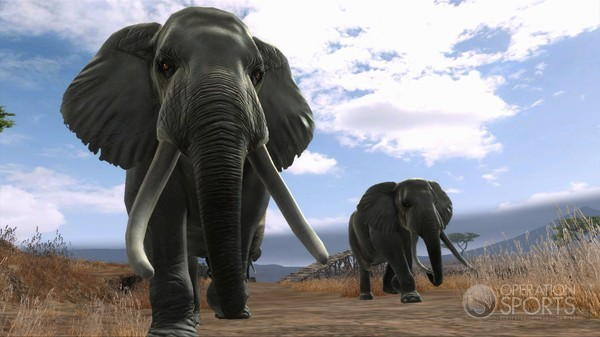 Cabela's Dangerous Hunts 2013 Screenshot #7 for Xbox 360, PS3, Wii