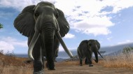 Cabela's Dangerous Hunts 2013 screenshot #7 for Xbox 360, PS3, Wii - Click to view