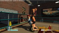 5 Star Wrestling screenshot #4 for PS3 - Click to view