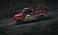 DiRT Rally screenshot #15 for PC - Click to view