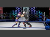 CHIKARA: Action Arcade Wrestling Screenshot #5 for PC - Click to view