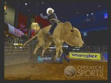 Professional Bull Riders Out of the Chute Screenshot #2 for Wii - Click to view