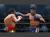 Fight Night Round 4 Screenshot #72 for Xbox 360 - Click to view