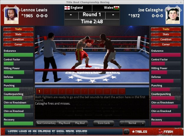 Title Bout Championship Boxing 2013 Screenshot #13 for PC