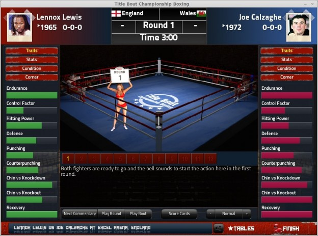 Title Bout Championship Boxing 2013 Screenshot #14 for PC