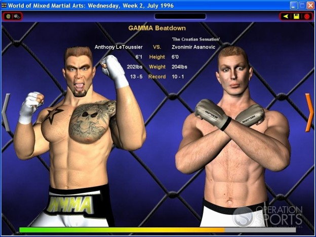 World of Mixed Martial Arts Screenshot #4 for PC