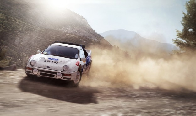 DiRT Rally Screenshot #9 for PC